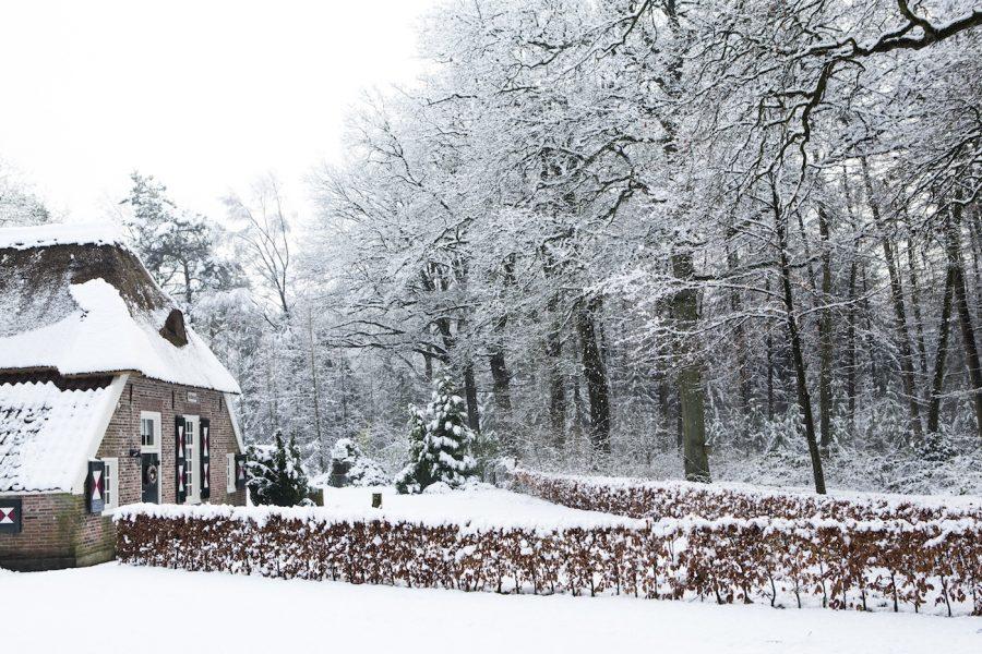 Sneeuw in Vechtdal Overijssel